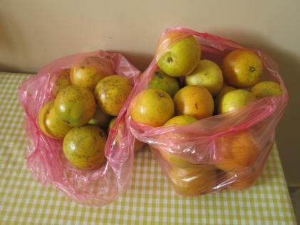 6 kilos of oranges costs about 1.60 USD