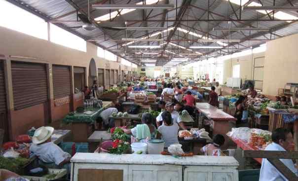 tip 7 valladolid mexico market