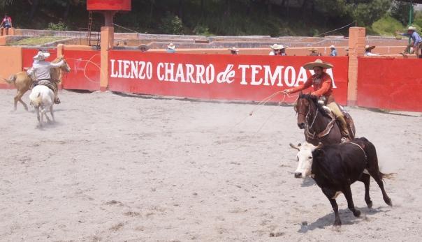 Charreada