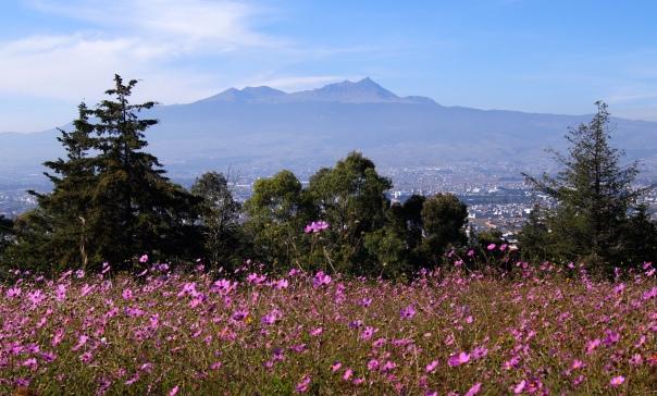 no hay bronca volcano from sierra morelos.JPG