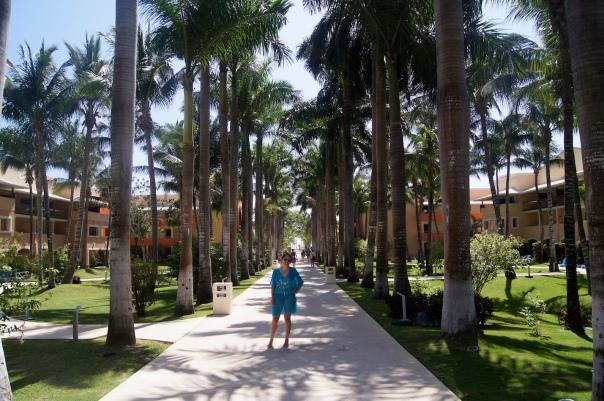 Barcelo Resort during Phish 2019