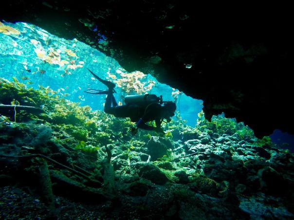 cenote dive 9